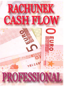 program_rachunek_cash_flow_